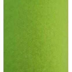 Feutrine 1 mm vert fluo (18)