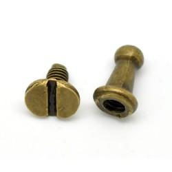 6 boutons de col bronze...